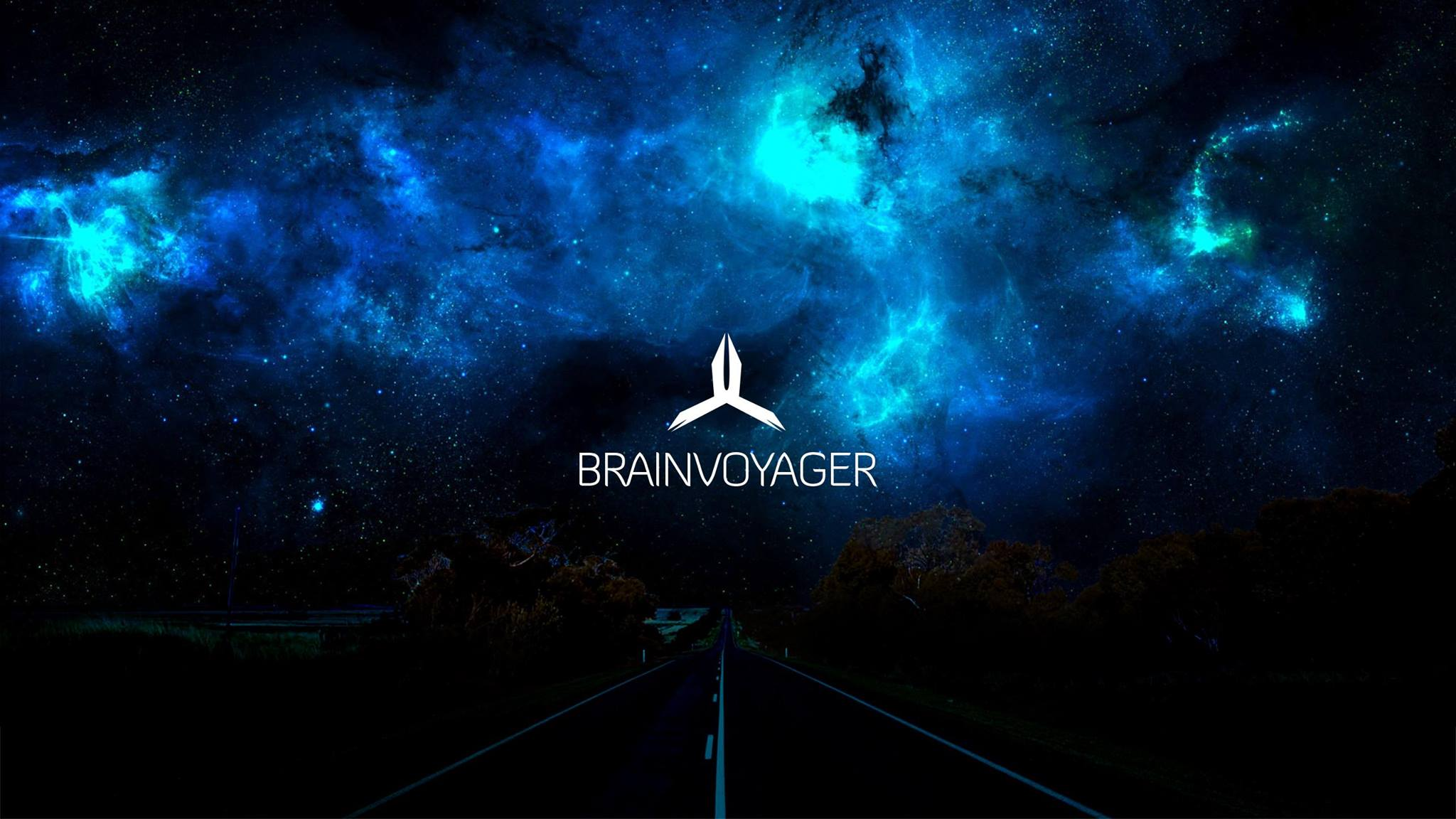 Brainvoyager