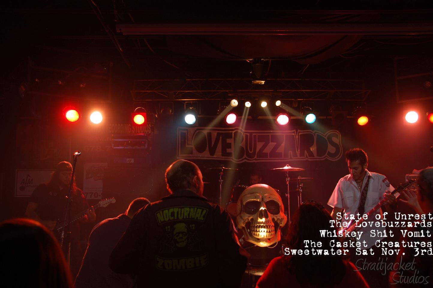 the lovebuzzards