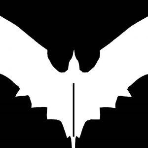 Bleeding Raven – Interview
