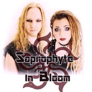 Saprophyte In Bloom