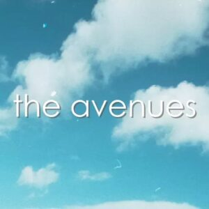 The Avenues – Interview